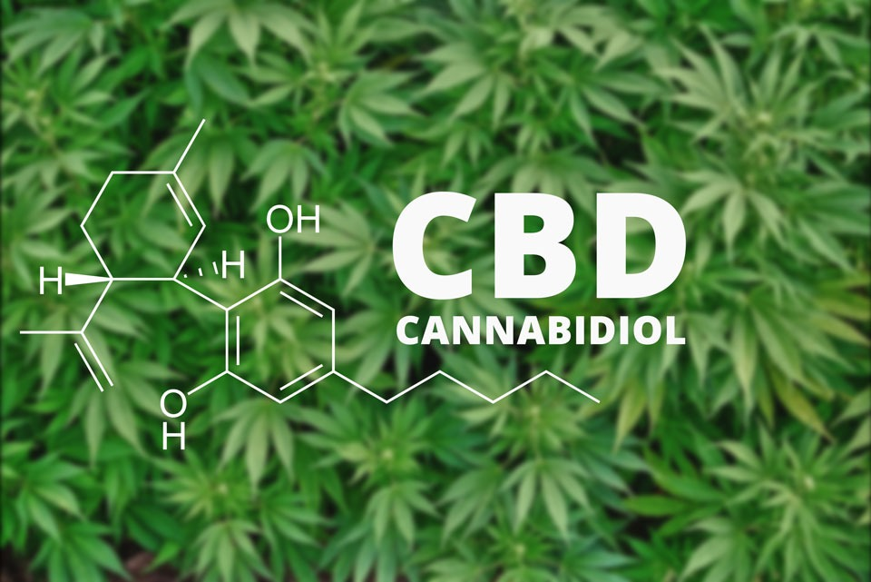 About Cannabidiol – A Quick Introduction to CBD